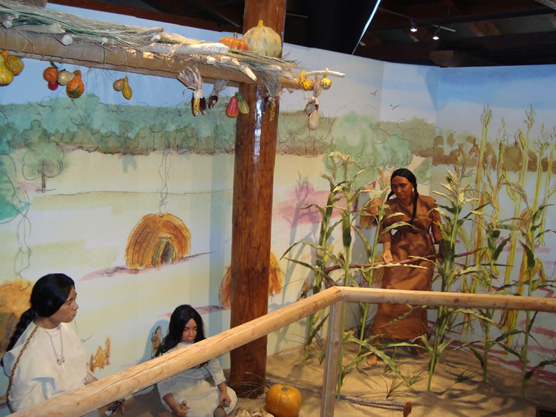 Native American Farming